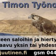 Timon Työnohjaus ja Terapia (TTT)